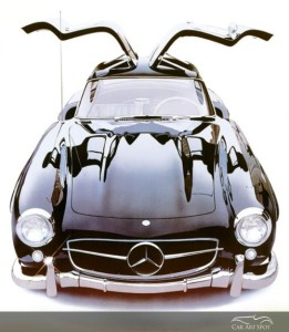 GULLWING by Harold Cleworth